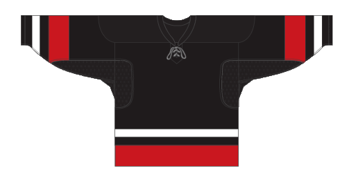 Custom team canada dark team hockey jersey CAN | Design Your Own | No Min