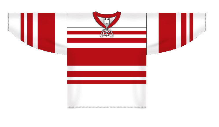 Custom Detroit pro team hockey jersey deta det | Design Your Own | No Min