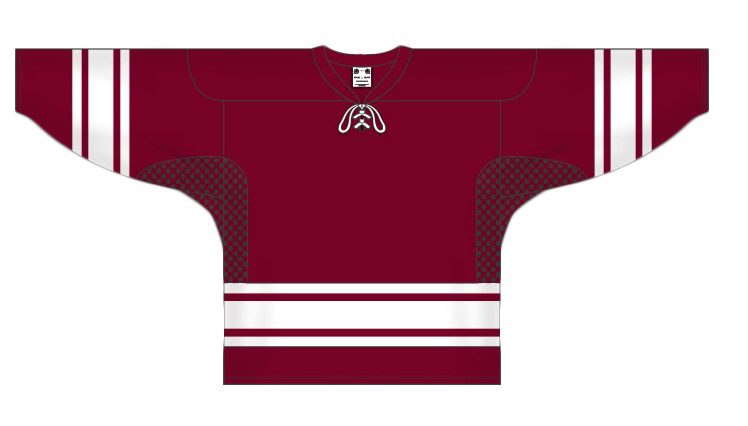 Custom Phoenix hockey jersey
