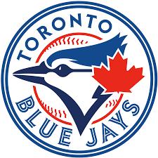 ac5ab6fcf Custom Minnesota Baseball Jerseys · Blank Toronto Blue Jays Jerseys