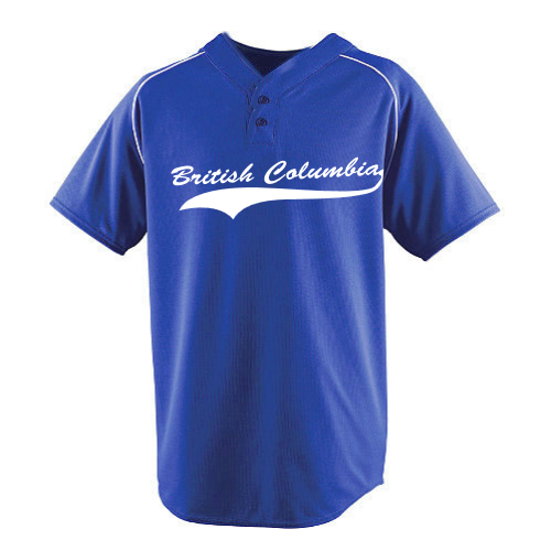 Customized  | Canada Dry Flex Baseball Jerseys | No Minimium Order