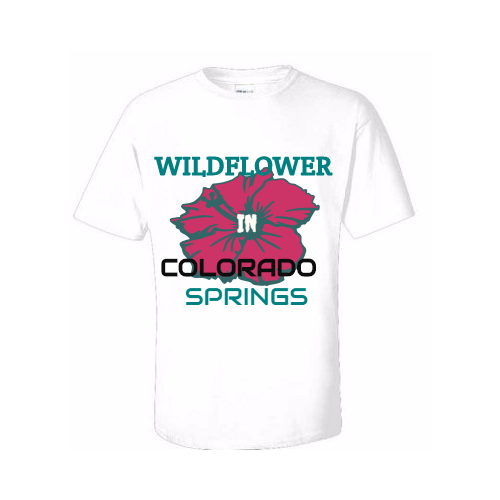Colorado Springs T-Shirts